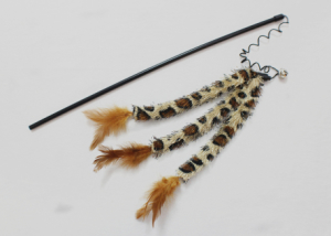 Jungle tail feather cat teaser