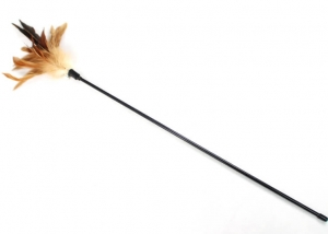 Natural Pheasant Feather Cat Teaser Toy